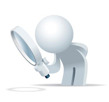 search wordpress